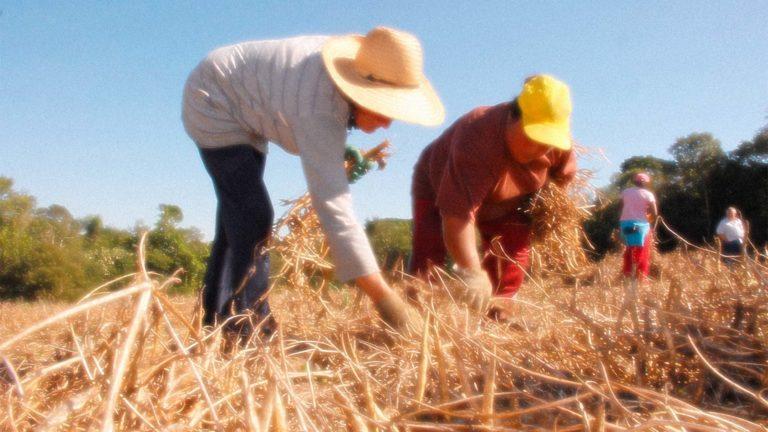Apoio à agricultura familiar catarinense